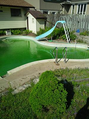 Dirty Pool 5